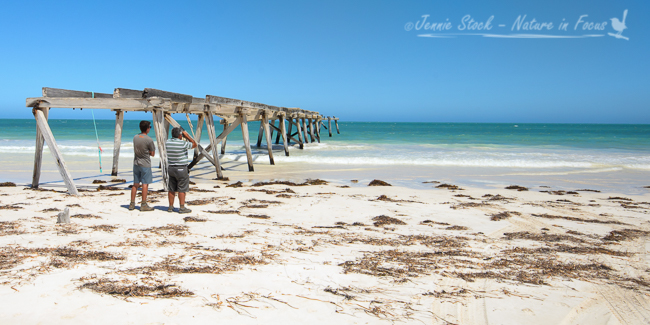 Abandoned jetty at Eucla